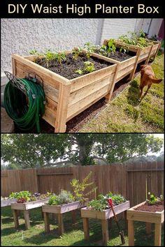 Pallets become waist high raised bed garden off the - Waist high raised garden bed plans ...