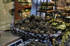 All about truffle festivals in Italy, from what to expect at these specialty food festivals to where to find them this fall!