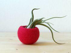 cute-felted-vases-animal-planter-stella-melgrati-19