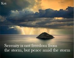 Serenity - is not freedom from the storm, but peace amid the storm. #FAVQUOTEFRIDAY