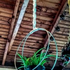 Modern Macrame Unique Double Hoop Spiral Plant hanger W/ Pot included Silver or gold hoops other colors available macrame flower pot holder Macrame Hanging Planter, Hanging Planters, Flower Planters, Flower Pots, Neon Pothos, Gold Hoops, Metal Beads, Plant Hanger, Pot Holders