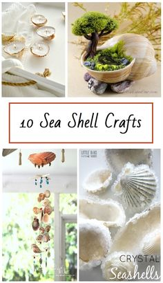 10 Sea Shell crafts Ten different creative ways to use shells. Nifty Crafts, Sea Crafts, Sea Glass Crafts, Crafts To Make, Seashell Projects, Seashell Crafts, Seashell Art, Crafts With Seashells, Driftwood Projects