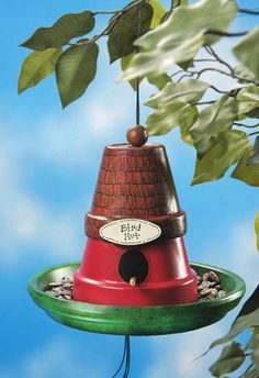 Create a bird hut and feeder