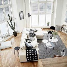 Ensemble - Fenêtre - Blanc - Plante