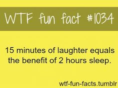 WTF Fun Facts About Love   wonder how many of these WTF facts are true. (45 pics)