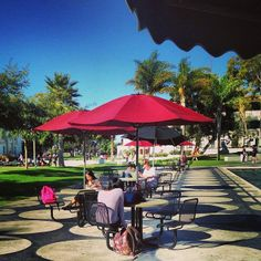 What a beautiful fall day to study outside! #lmucoffeecart