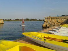 Preciosas quedan estas tablas de SUP y Kayaks en la Illa del Fluvià.