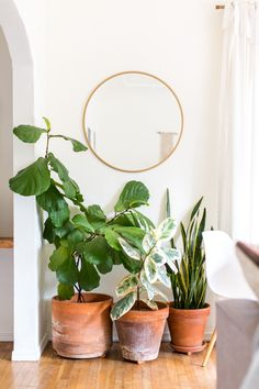 A simple round mirror from Target acts like an extension of the window and helps the space feel larger.