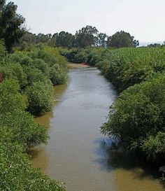 The Jordan River is unique in its natural & cultural wealth, but is threatened by excessive water diversion and pollution, treated as a backyard dumping ground; iIt has taken a decade of hard work but concrete change is finally taking place in the River Jordan.  As of May 2013, the Israel Water Authority is allowing 9 mcm / year of fresh water to flow regularly from Lake Kinneret into the Lower Jordan River in an effort to ecologically rehabilitate the river (Sept/2015).