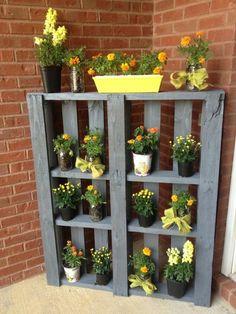 mur-végétal-en-palette-pots-de-fleurs-rangés-sur-une-palette-verticale-et-peinte-grise
