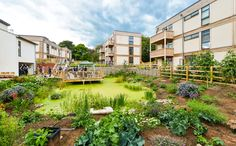 cohousing... i want green roofs.