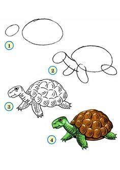 Учимся рисовать животных жарких стран