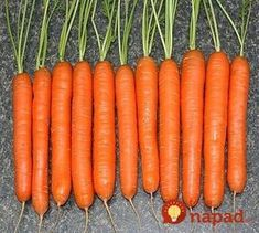 Carrots are now come in all shapes and sizes traditional long, tapered ones; short stubby ones; tiny fingerlike ones; even little round ones.