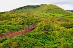 SIARAM :: O Touro Bravo na Ilha Terceira, Terceira Island, Azores, Portugal