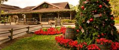 christmas at Disney's Fort Wilderness Resort & Campground