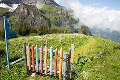 Wandern mit Kindern: Themenwanderwege und Themenpfade Schweiz - Fashitaly All Pictures Garden Design, To Go, Wanderlust, Hiking, World, Outdoor Decor, Kids, Travelling, Bucket