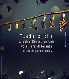Quote Of The Day, Spirituality, Quotes, Blog, Life, Cabana, Salvador, Butterflies, Prints