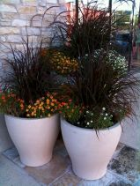 Fantastic fall container gardening ideas (5)
