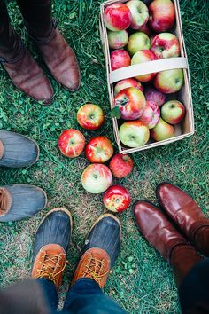 Classy Girls Wear Pearls: Apples, Pumpkins, and Friends for the Picking Apple Orchard Photography, Autumn Photography, Friend Photography, Photography Ideas, Maternity Photography, Couple Photography, Fall Pictures, Fall Photos, Fall Pics