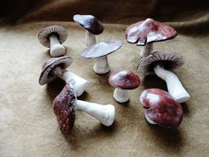 3 pcs whimsical Handmade Ceramic Mushrooms, Realistic, Sculpture, Home Decor, Decoration, Display, Terrarium