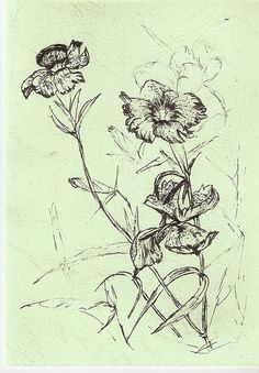 Love in Nature--flowers drawing-pen and ink | photo page ...