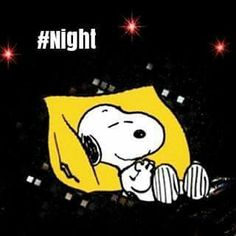 Snoopy lying on a pillow. #Night