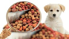 US Online Pet Food and Supplies Market 2019 Current Trends, Demand, Production Statistics, Business Growth Strategies and Forecast Outlook by 2022 « MarketersMEDIA – Press Release Distribution Services – News Release Distribution Services Food Dog, Best Dog Food, Cat Food, Best Dogs, Dog Food Recipes, Cooking Recipes, Food Manufacturing, Dog Food Brands, Pet Health