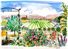 St Roch Jardin, Trausse, South of France. ErinHillSketching