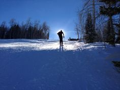 Look at that sunburst! DuVine Andy goes skiing in Aspen.