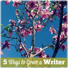 Five ways to grow a writer