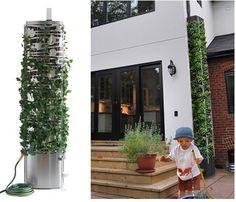 Cista: Rainwater Harvesting Concept
