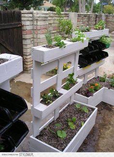 leuk voor in mijn kleine tuin.