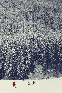I want to be here! I need snow soon.