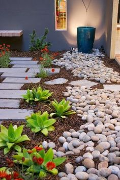 Love this! Drought tolerant and peaceful.