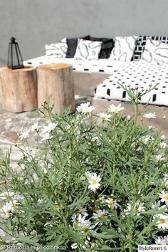 kukat,terassi,terassin sisustus