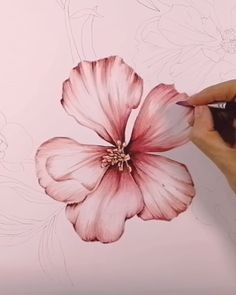 floral water colour botanical art how to video timelapse Here's the start of another composition, managed to drop my paintbrush and flick paint in the middle of it but hopefully not too noticeable! Watercolor Flowers Tutorial, Watercolor Flower Painting, Chinese Painting Flowers, Simple Watercolor, Oil Painting Flowers, Watercolor Artists, Floral Watercolor, Watercolor Paintings For Beginners, Painting Tips