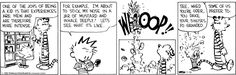 Calvin and one of the joys of being a kid