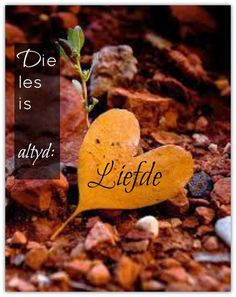 Afrikaanse Inspirerende Gedagtes & Wyshede: Liefde as tema Natural Life Quotes, Soul Songs, Afrikaanse Quotes, Goeie More, Living Water, Love You More, Me Quotes, Spirituality, Bible