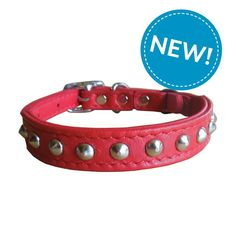 Outlaw Red Studded Leather Safety Cat Collar >>> You can find more details by visiting the image link. (This is an affiliate link and I receive a commission for the sales)