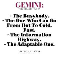 Gemini….Who are they?