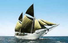 Kapal Pinisi menjadi menjadi ikon perahu tradisional Nusantara, dan terkenal dengan reputasi: memiliki daya jelajah yang jauh, mampu mengangkut banyak muatan, kuat, dan kemampuan untuk beradaptasi dengan berbagai kondisi perairan Nusantara.