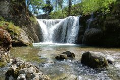 Rossfall bei Urnäsch AR.☑ Flora, Switzerland, Waterfall, River, Outdoor, Pictures, Outdoors, Plants, Waterfalls