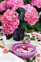 Rosa Hortensienblüten in einer violetten Glasvase