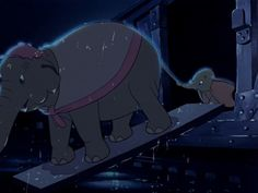 Dumbo helps with the circus Old Disney, Cute Disney, Baby Disney, Dumbo Disney, Disney Magic, Disney Pixar, Disney Animated Films, Disney Films, Baby Dumbo