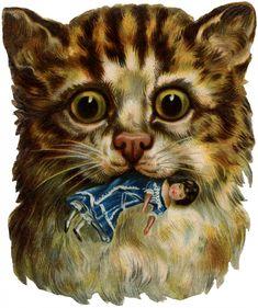 Vintage Odd Cat Image! - The Graphics Fairy