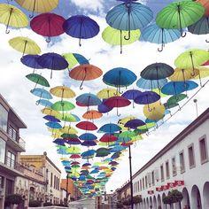 """Rolling around #FNSM 2015 #UmbrellaSky #Aguascalientes"""