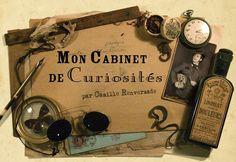 Cabinet de curiosite par Camille Renversade