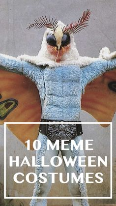 Luckily, while 2018 hasn't given us much in the way of good news, the meme harvest has been bountiful. And a lot of them translate nicely into Halloween costumes. Here are a few of the best — and, more importantly, the easiest to pull off. Halloween Ideas, Halloween Costumes, Best Memes, Good News, Harvest, Halloween Outfits