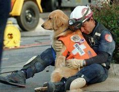 Fire rescue dog.....2 great heroes