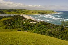 Mdumbi beach, in the Wild Coast (Transkei), South Africa. South Africa Holidays, Once In A Lifetime, Marine Life, Beautiful Landscapes, Holiday Ideas, Bespoke, Landscape Photography, Safari, Beautiful Places